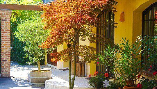 Garten von ViniAmo in Ratingen