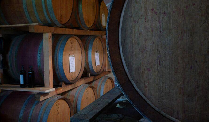 ViniAmo - Weinfässer